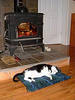Warm-BW