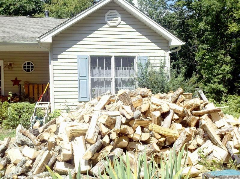 Winter firewood 2011