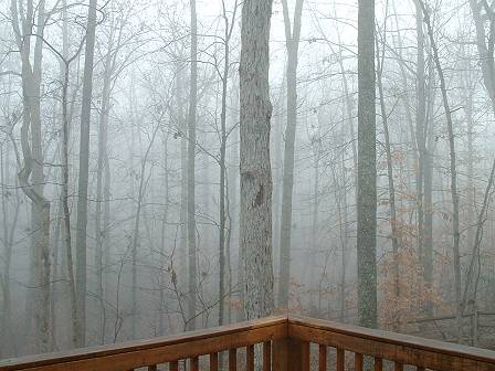Fog-05web.JPG
