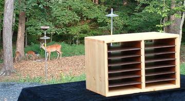 woodland-workshop
